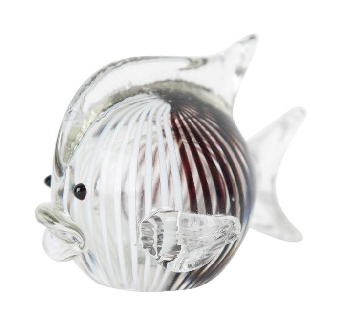 Glasfisk, Stribet, sort/hvid