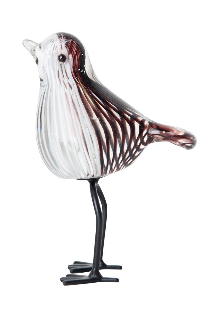 Glasfugl, hale ned, Stribet, sort/hvid