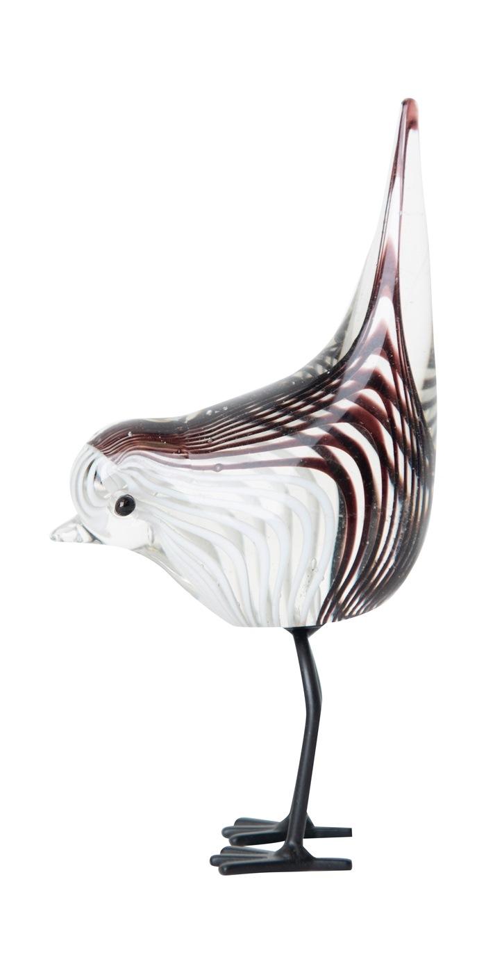 Glasfugl, hale op, Stribet, sort/hvid